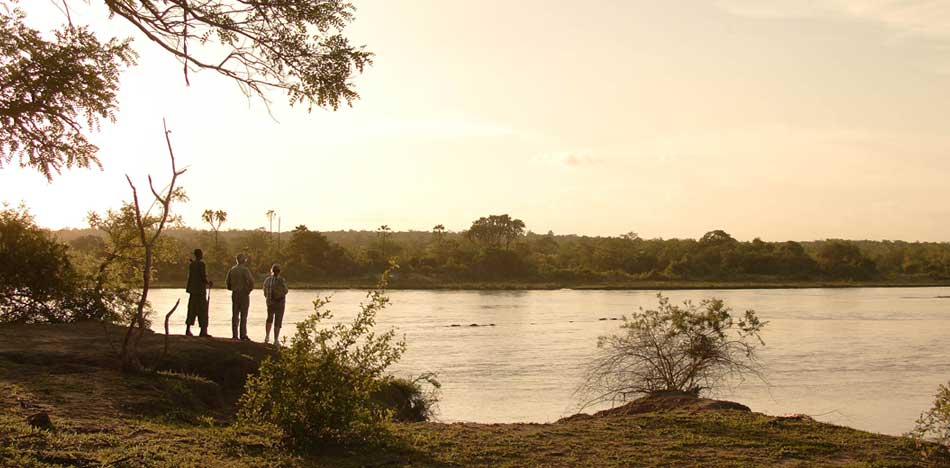 Ruaha River Walk
